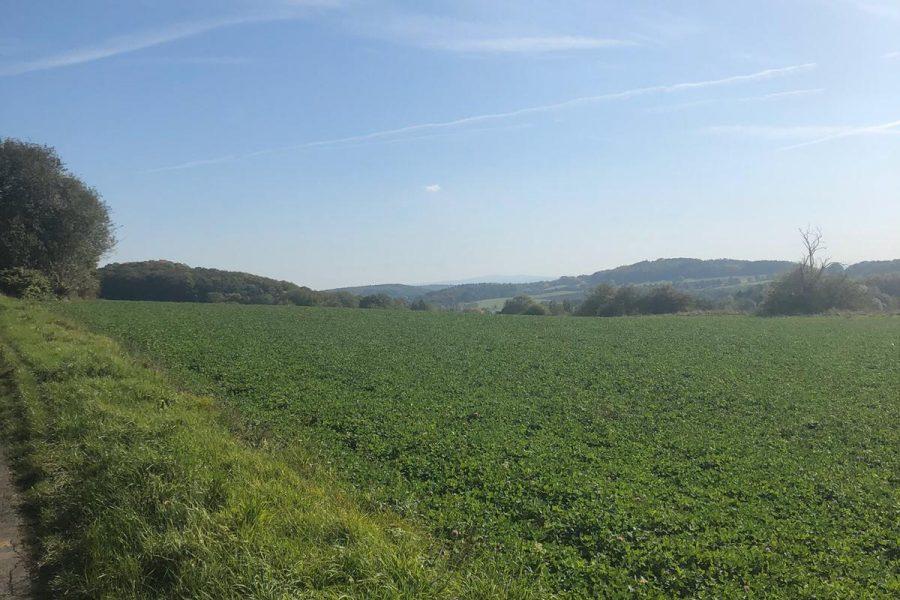 Landschaft Mengerskirchen